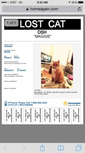 Maggie's Wanted Poster